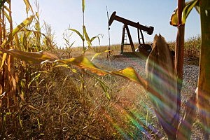 oil companies fined for biofuel that doesn't exist