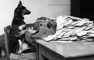 http://wac.450f.edgecastcdn.net/80450F/newstalk870.am/files/2012/04/dog-at-typewriter--300x192.jpg