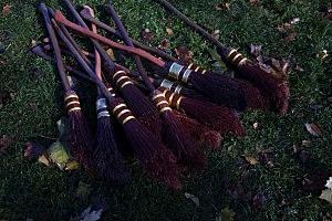 middlebury college quidditch team