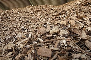 Biomass chips ready for process