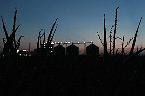 Oregon ethanol plant built with taxpayer money goes under