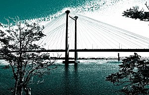 Cable Bridge lights turn teal for ovarian cancer awareness