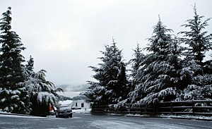 1-3 inches snow forecast, then freezing rain mix