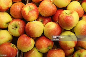 A LOT of apples coming off the trees this season (Sean Gallup)