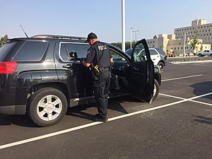 Richland child locked in car but care provider was present (Richland police)