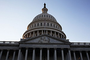 Surprising number of Americans are ignorant about our government, process and prodecures (Getty Images)